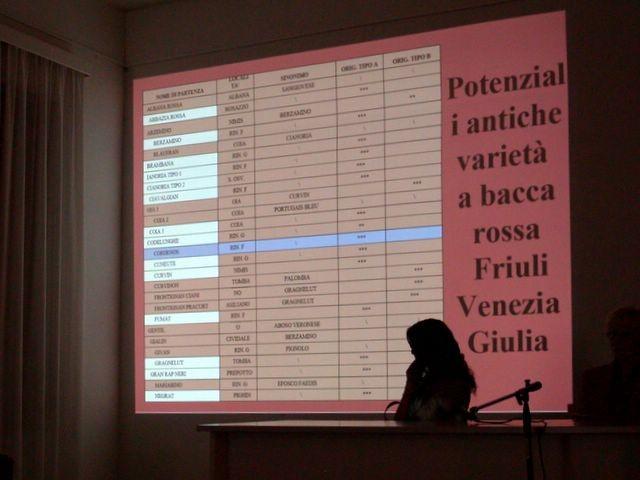 La presentazione della ricerca di Alessia Gigante